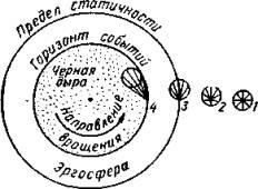 Введение в физику черных дыр