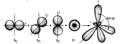 Основные теоретические положения органической химии. Насыщенные (предельные) углеводороды