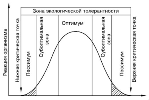Схема действия факторов среды