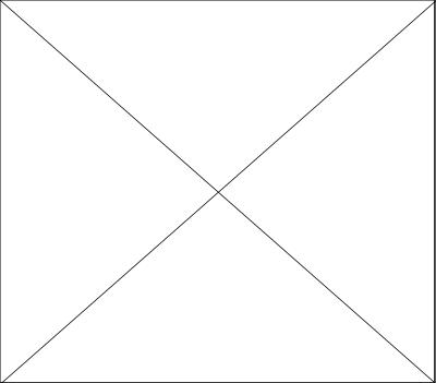 Image_1.gif (7007 bytes)