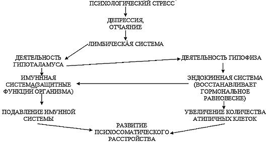 СХЕМА РАЗВИТИЯ СОМАТИЧЕСКОГО ЗАБОЛЕВАНИЯ ВЫЗВАННОГО НЕРВНЫМ ПЕРЕНАПРЯЖЕНИЕМ (СТРЕССОМ)
