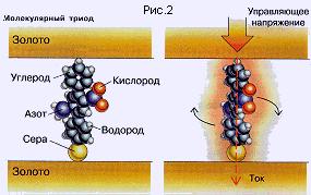 molek3.gif (24101 bytes)