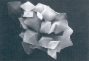 fig8.jpg - 18139 Bytes